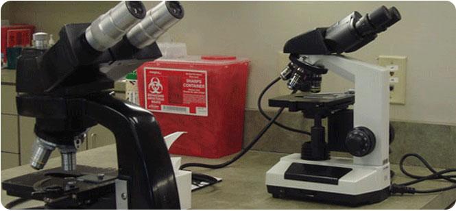 vet laboratory equipment